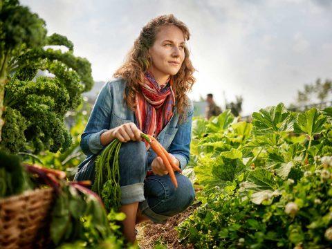 Global Tanks Starting a Community Garden