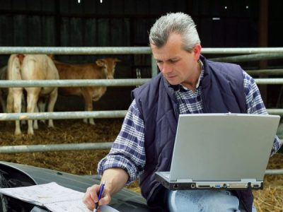Rural Field Days Go Virtual
