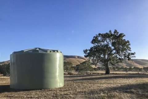 Green Water Tank Near Tree