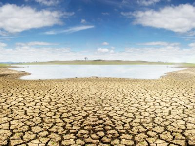 Drought Suffering Landowners – Support Offered