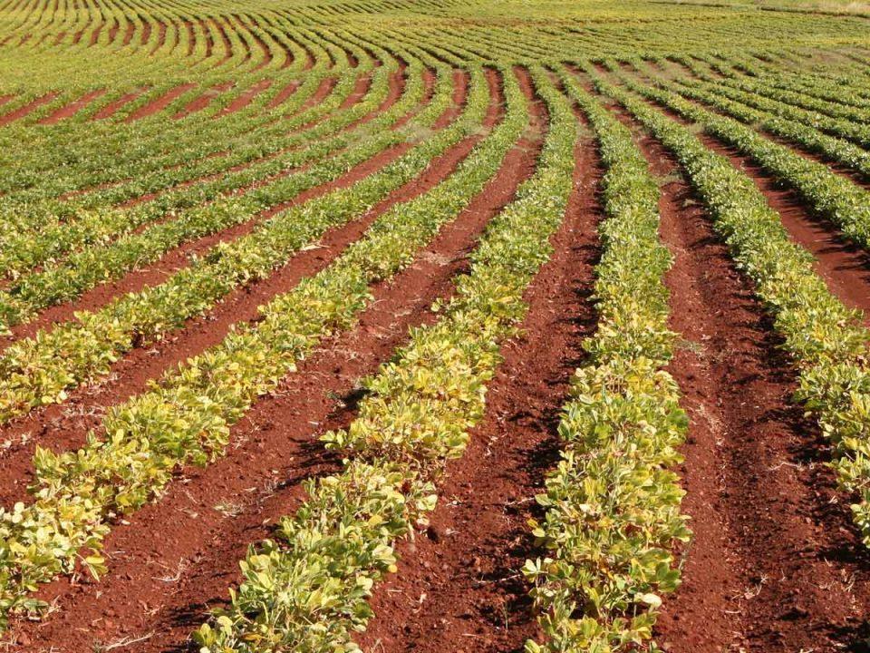 farm pest control, crop yield, global rotomoulding, pest control spend australia